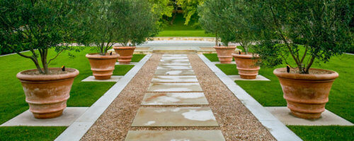 The Benefits of Clay Planters - Tuscan Imports