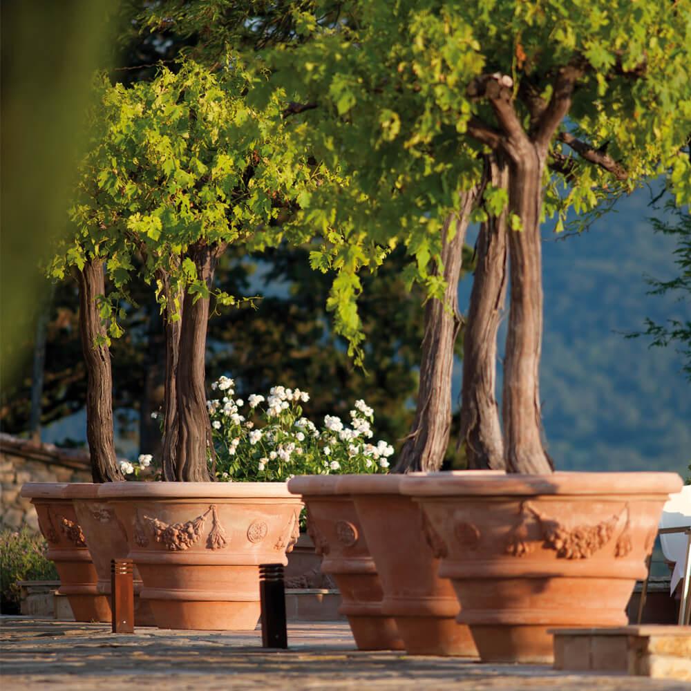 Terracotta Planter for trees